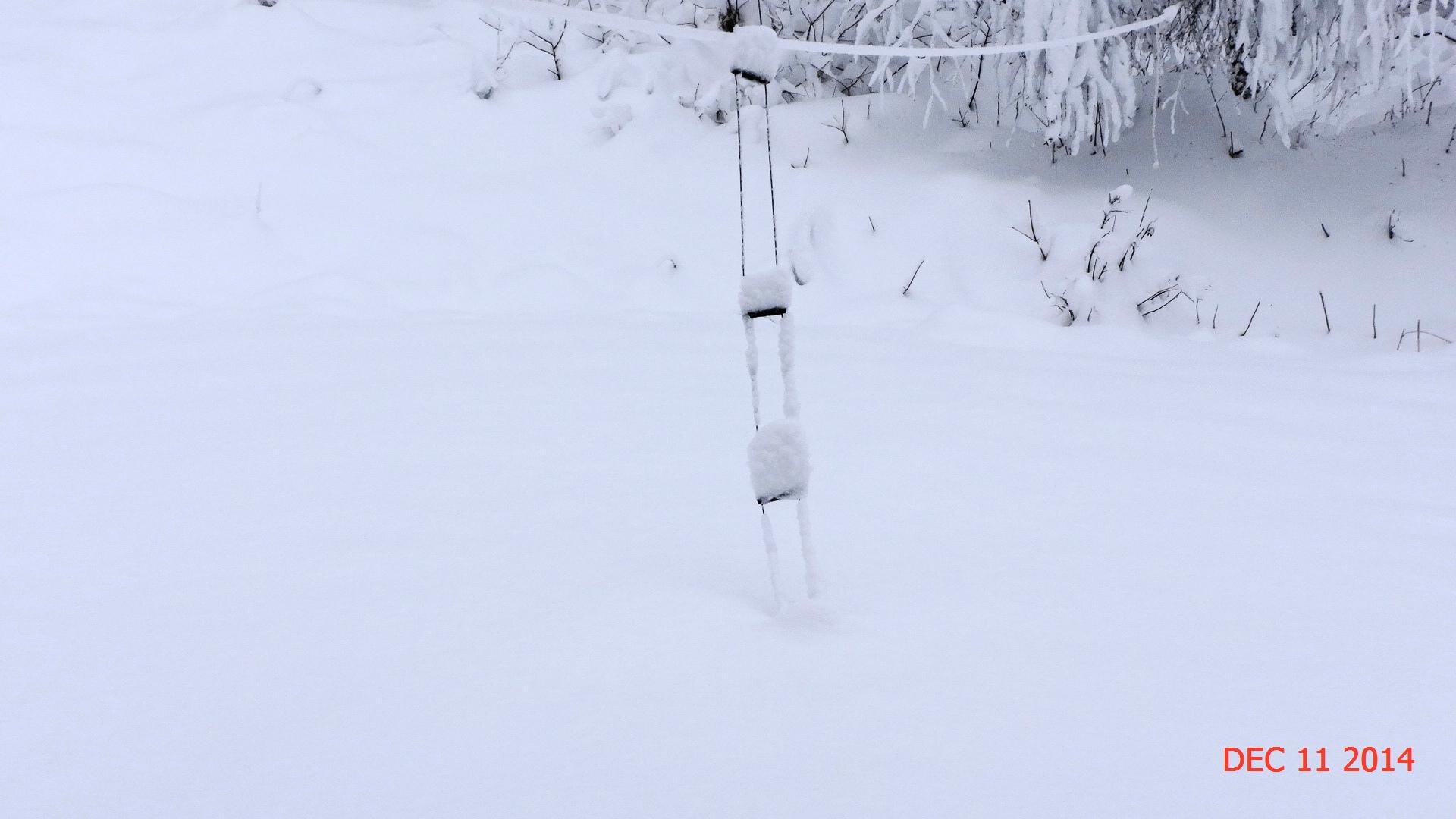 w7fg-snow.jpg