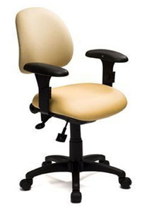 Petite Office Chairs  sc 1 st  Healthy Posture Store & Petite Office Chair u2013 custom fit for your back comfort