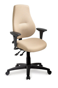 ergoCentric myCentric Executive Office Petite Chair