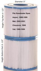 6000-134 Sundance Spas Filter