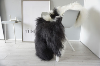 Genuine Icelandic Sheepskin Rug - Cream white | Blacky brown Mix - Super Soft Touch Long Wool - SI 362
