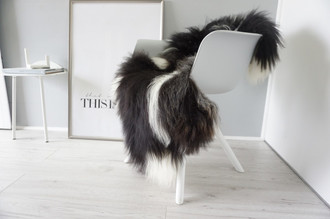 Genuine Icelandic Sheepskin Rug - Cream white | Blacky brown Mix - Super Soft Touch Long Wool - SI 401