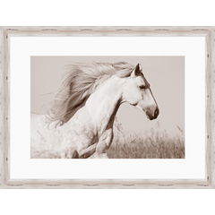 Run Free Horse Print Framed
