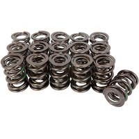 "1.640"" OD, Dual spring with Damper 702212-16"
