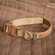 Alpha Dog Tactical Collar: tan with a Cobra buckle