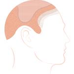 7-34-wig.jpg