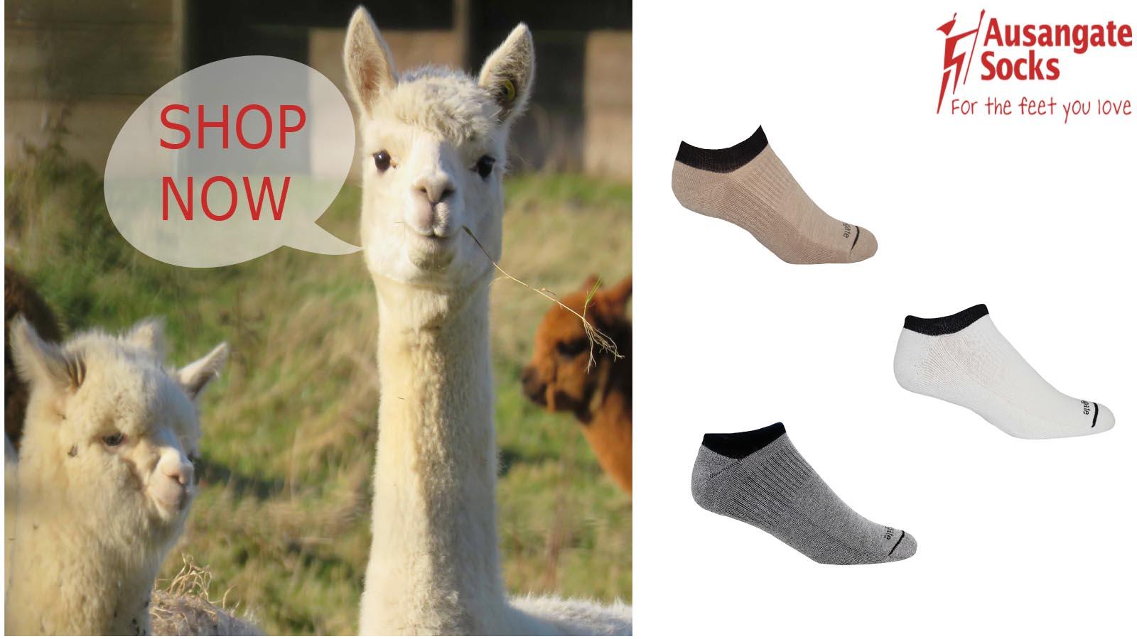 Ausangate no-show alpaca socks.