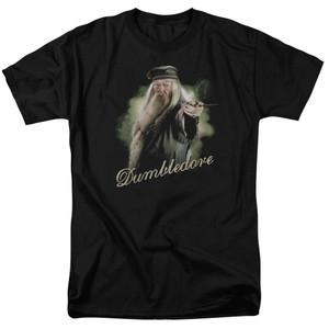 Dumbledore Portrait w/Wand