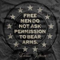 Free Men Don't Ask Permission Normal Fit T-Shirt