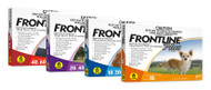 Frontline Plus for Dogs - the very best in spot on treatment