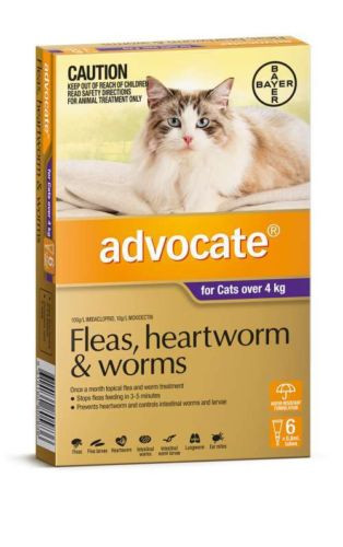 Advocate for Large Cats over 4kg 6 pack   Love A Pet