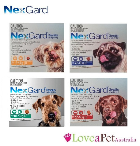 NexGard - Flea and tick treatment for dogs in a tasty chew!