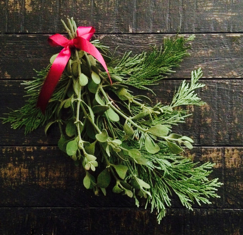 Mistletoe & Cedar Swag for Kissing, Yule & Christmas - Live & Fresh - USA Orders Only