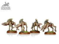 SILVER Kroot Hounds