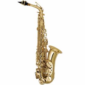 Palatino Elite Student Eb Alto Saxophone With Case (WI-819-A)
