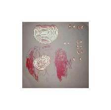 """E*Rock - Conscious LP - 12"""" Vinyl"""
