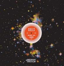 "Gulls - Boomarm Nation Vol.1 - 12"" Vinyl"