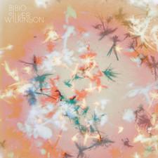 Bibio - Silver Wilkinson - LP Vinyl