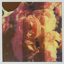 "Son Lux - Black Waters - 7"" Flexi Vinyl"