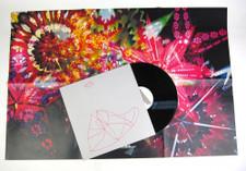 Caribou Vibration Ensemble - CVE Live 2011 - LP Vinyl