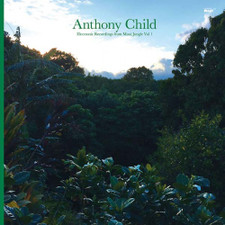 Anthony Child - Electronic Recordings From Maui Jungle Vol. 1 - 2x LP Vinyl