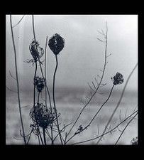 Recondite - Placid - 2x LP Vinyl