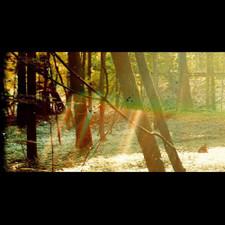 Childish Gambino - Camp - 2x LP Vinyl