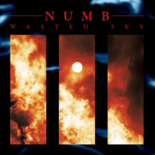 Numb - Wasted Sky - LP Vinyl