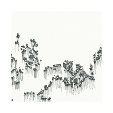 Wowflower - Balloons - LP Vinyl