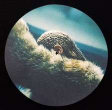Beyonce - Lemonade - Single Slipmat