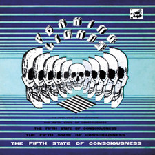 Peaking Lights - The Fifth State Of Consciousness - 2x LP Vinyl