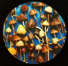 Psylocybe - Mushrooms - Single Slipmat