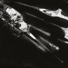 Psychic Health - Psychic Health - LP Vinyl