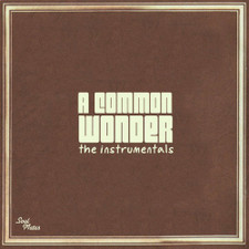 Common Vs. Stevie Wonder - A Common Wonder Instrumentals - 2x LP Vinyl