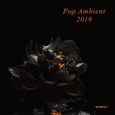 Various Artists - Pop Ambient 2019 - 2x LP Vinyl