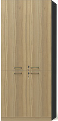 Brooklyn 2 Wooden Doors Cabinet in Brown Oak