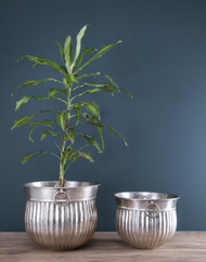 Set Of 2pcs Pot Planters In Nickel (PL1012)