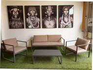Phoenix 3pcs Sofa Set + Coffee Table