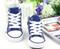 Blue Converse style, canvas shoe front.
