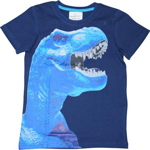 Boys Blue Dinosaur T-Shirt.