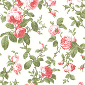 344-68702-Wilda Red Roselle Trail wallpaper