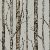 Urban Retreat The Birches Dove Wallpaper LL4757