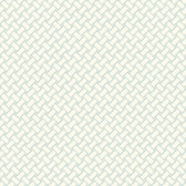 Watercolors Basketweave Pistachio Wallpaper WT4595