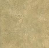 Harmony Moss Sugdin Hombre Wallpaper HMY57665