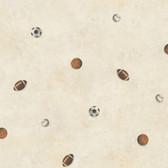 Chesapeake Sports Balls Toss Hazelwood Wallpaper TOT47191