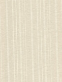 Ditmar Champagne Striped Woven Texture 2446-83558