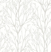 Autumn Silver Tree Wallpaper