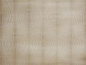 DL2931 Candice Olson Splendor Radiant Wallpaper  Gold/White