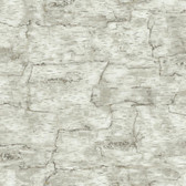 LAKE FOREST BIRCH BARK WALLPAPER-OFF WHITE