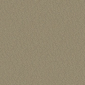 Metallics Book Tracerie Hazelnut Wallpaper CW9265